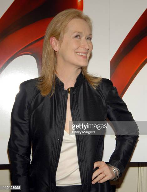 "Meryl Streep during ""The Devil Wears Prada"" - A Dinner and Private Auction Hosted by the St. Regis Hotel - May 23, 2006 at St. Regis Hotel in New..."
