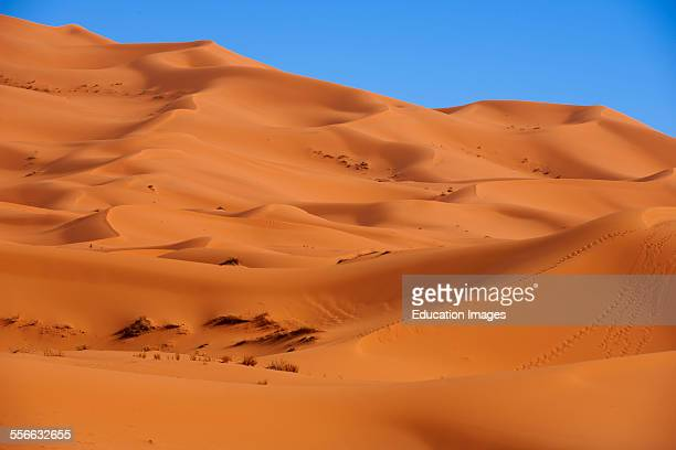 Merzouga Erg Chebbi Merzouga sand dunes Sahara Desert Morocco Maghreb North Africa