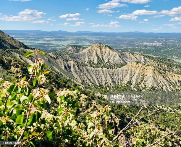 mesa verde national park - pueblo colorado stock pictures, royalty-free photos & images