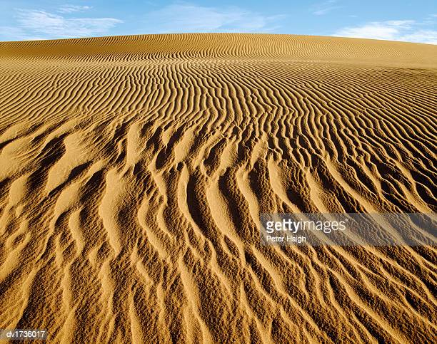 mesquite dunes, death valley national park, california, usa - number of people stock pictures, royalty-free photos & images