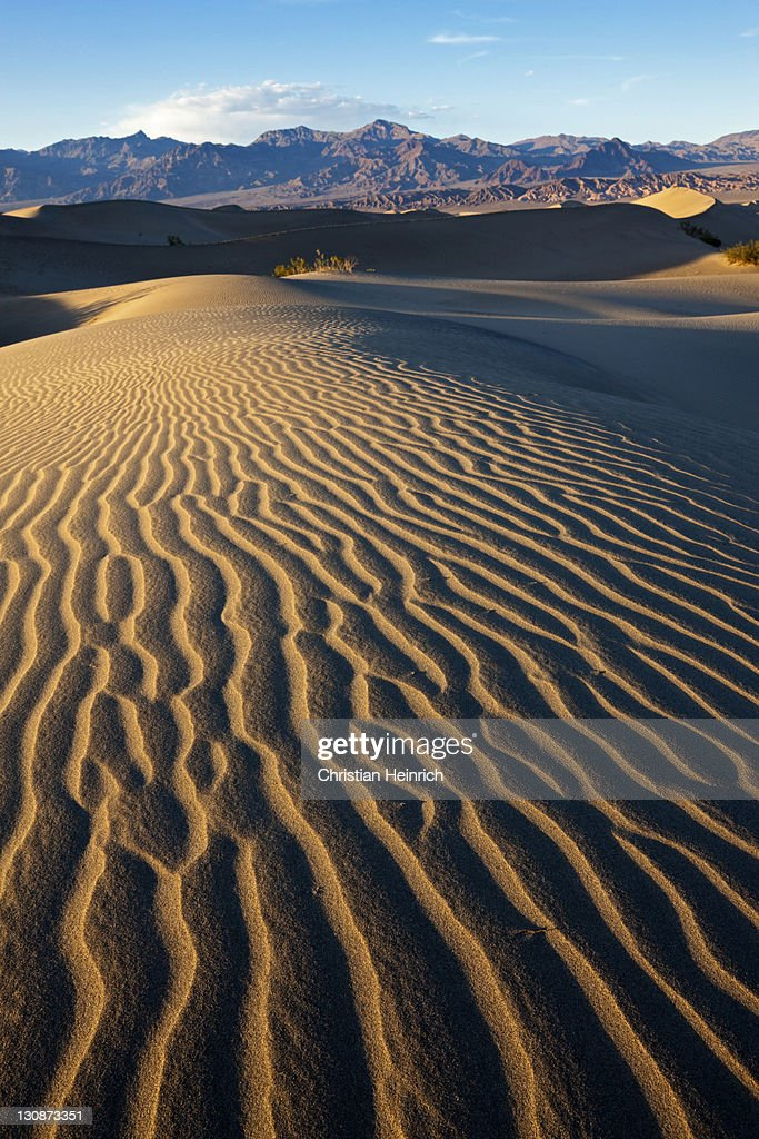 Mesquite Sand Dunes, Death Valley National Park, Mojave Desert, California, Nevada, USA : Stock Photo