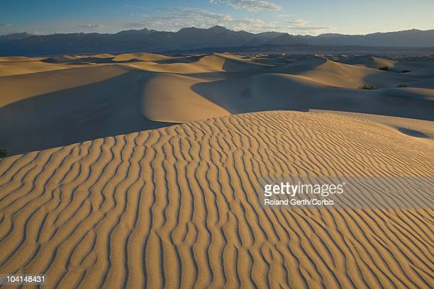 mesquite sand dunes - public domain stock pictures, royalty-free photos & images