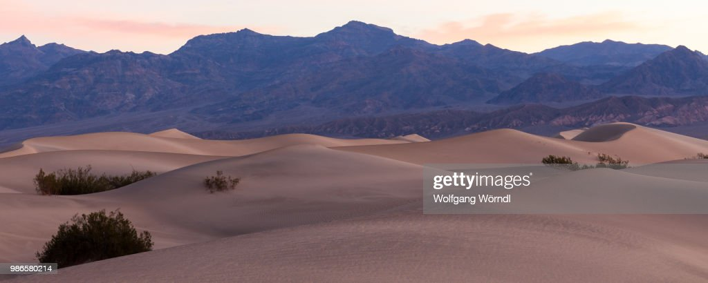 Mesquite Sand Dunes : Stock Photo
