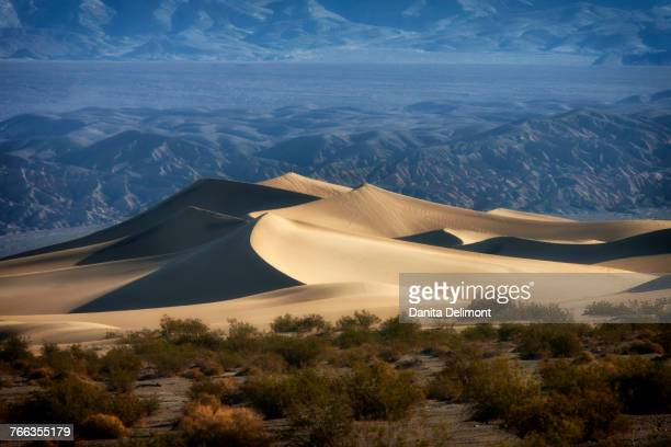 Mesquite Sand Dunes with Grapevine Mountains in background, Great Sand Dunes National Park and Preserve, Death Valley, California, USA