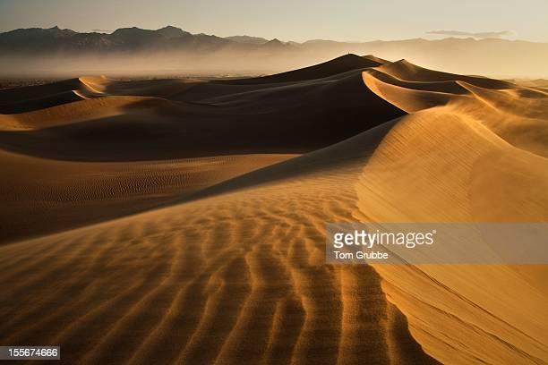Mesquite Sunrise I