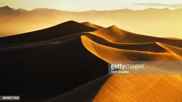 Mesquite Sunrise III