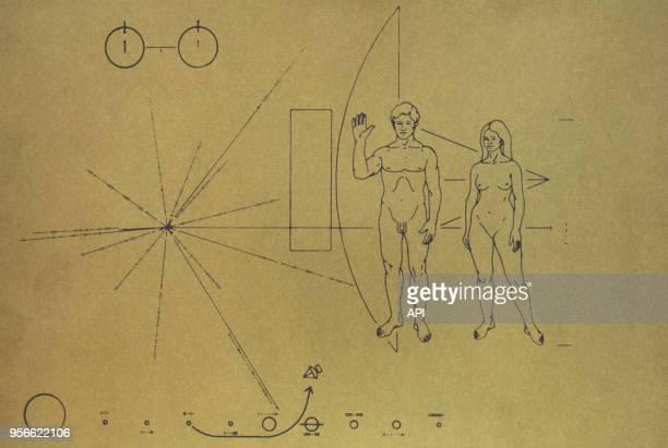 Message aux extraterrestres la plaque de Pioneer représentant un homme et une femme porté par les sondes Pioneer