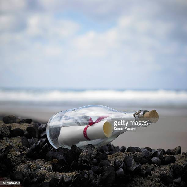 Message in a bottle on rock at beach.