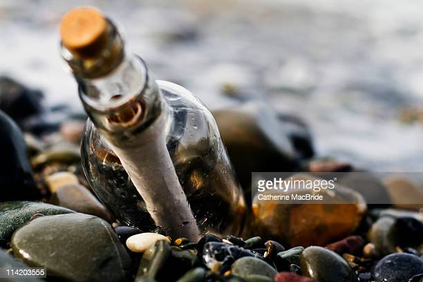 message in  bottle - catherine macbride stock pictures, royalty-free photos & images