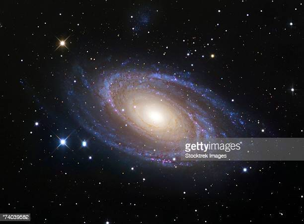 messier 81, also known as ngc 3031 or bode's galaxy, is a spiral galaxy about 12 million light-years away in the constellation ursa major. - grande carro costellazione foto e immagini stock