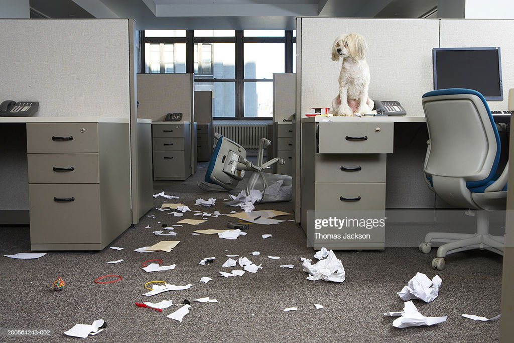 Messy office : Stock Photo