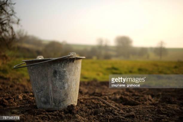 Metal bucket in the garden