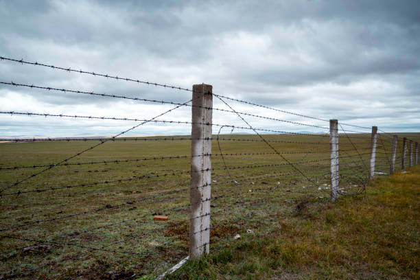 Metal fence with barbed wire at prairie
