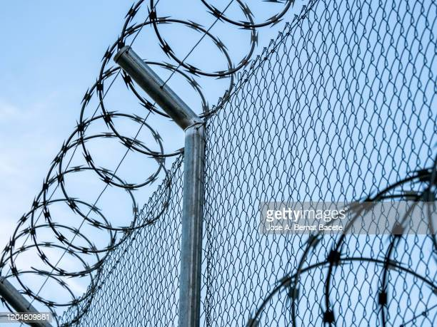 metal fence with barbed wire. - refugee camp stock pictures, royalty-free photos & images