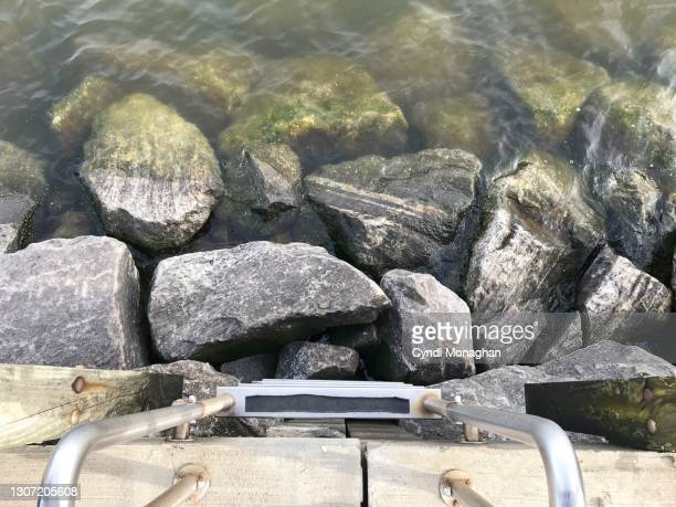 metal ladder leading to water and rocks, north point state park - maryland us state stock pictures, royalty-free photos & images
