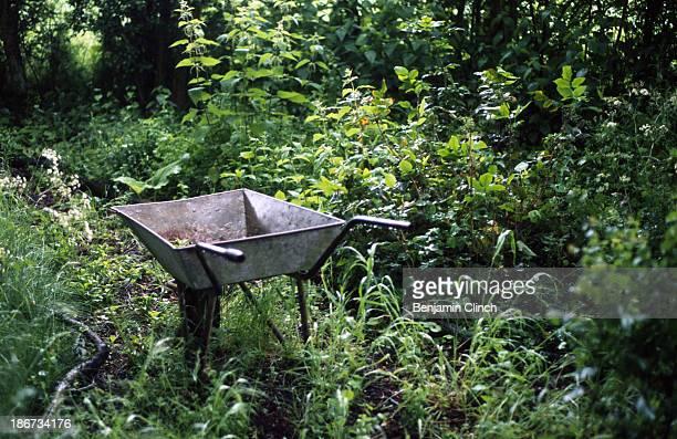 Metal wheelbarrow in a garden