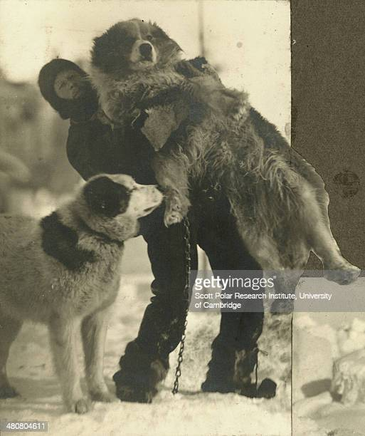Meteorologist Leonard Hussey with Samson the dog during the Imperial TransAntarctic Expedition 191417 led by Ernest Shackleton