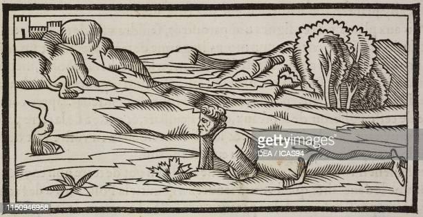 Method for finding water, engraving from Architecture ou art de bien bastir , Volume VIII, by Marcus Vitruvius Pollio Paris.