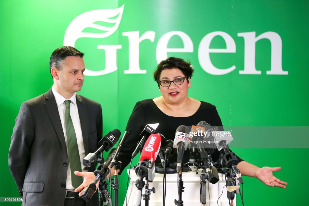 Green Party Co-Leader Metiria Turei Rules Out Ministerial Position Following Electoral Admissions