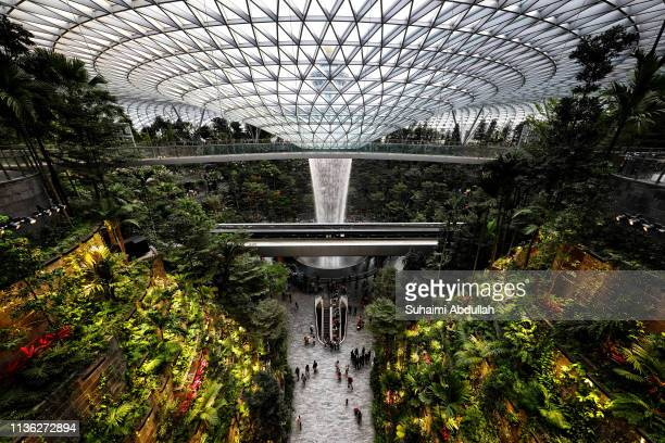 A 40 metres high largest indoor waterfall in the world Rain Vortex sits in the lush greenery of the Forest Valley inside the Jewel Changi Airport on...