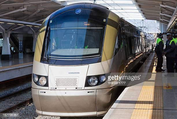 Metro Train Gautrain, in Johannesburg