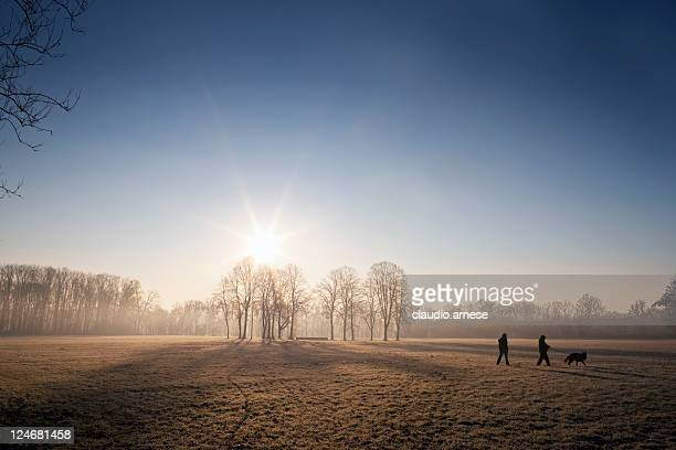 metropark in the morning. color image - morning stockfoto's en -beelden