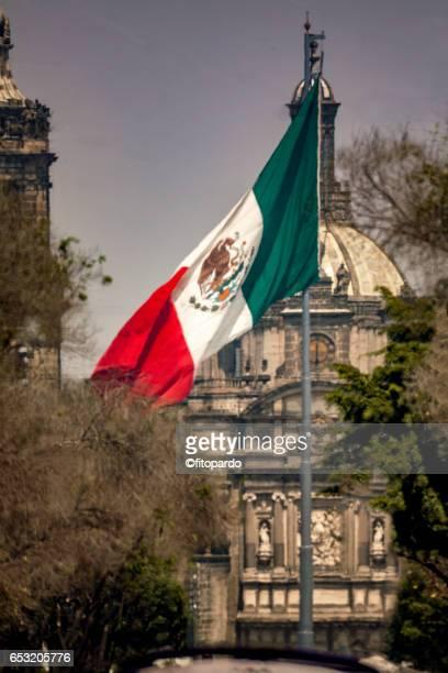 metropolitan cathedral - bandera mexicana fotografías e imágenes de stock