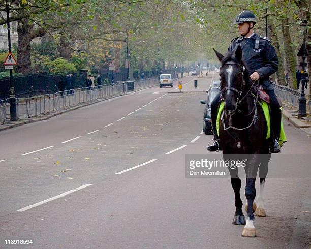 Metropolitan Mounted Policeman