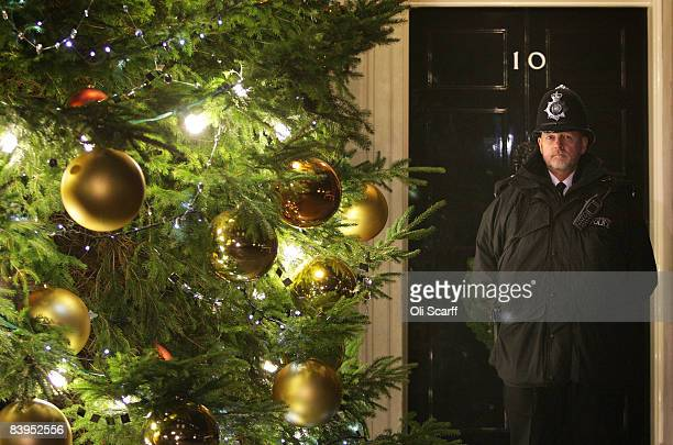 A metropolitan policeman standing in Downing Street admires the Christmas tree outside Number 10 after its lights were switched on by Sarah Brown the...