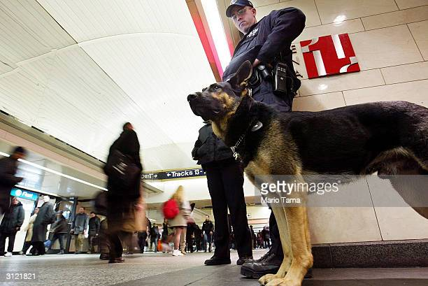 Metropolitan Transit Police officer and dog stand guard inside Penn Station March 22 2004 in New York City Following the Madrid train bombings...