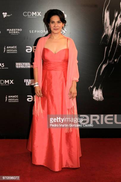 Mexican actress Arcelia Ramírez poses during the Red Carpet of 60th Ariel Awards at Palacio de Bellas Artes on June 5 2018 in Mexico City Mexico