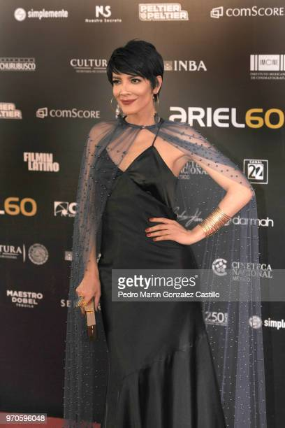 Mexican actress Carmen Félix poses during the Red Carpet of 60th Ariel Awards at Palacio de Bellas Artes on June 5 2018 in Mexico City Mexico
