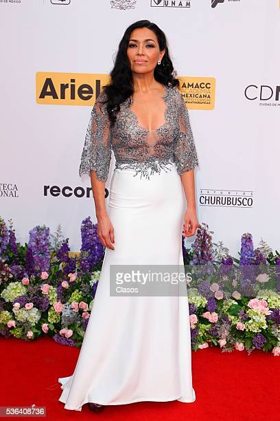 Mexican actress Dolores Heredia attends the red carpet of Premios Ariel 2016 at Nacional Auditorium on May 17 2016 in Mexico City Mexico