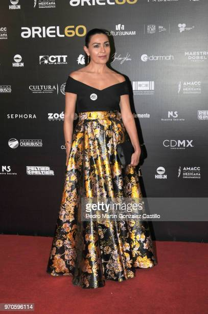 Mexican actress Dolores Heredia poses during the Red Carpet of 60th Ariel Awards at Palacio de Bellas Artes on June 5 2018 in Mexico City Mexico