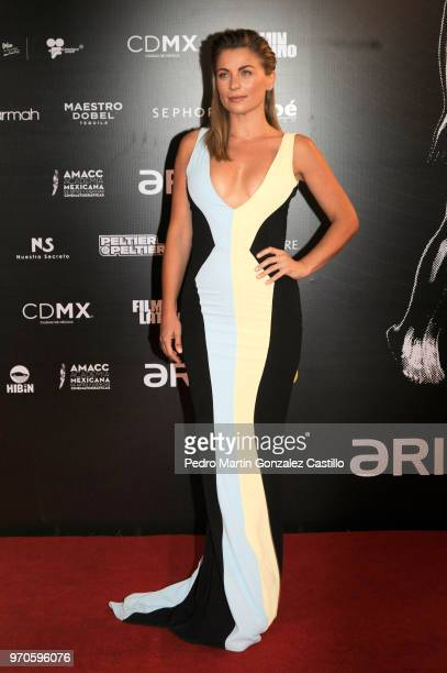 Mexican Actress Ludwika Paleta poses during the Red Carpet of 60th Ariel Awards at Palacio de Bellas Artes on June 5 2018 in Mexico City Mexico