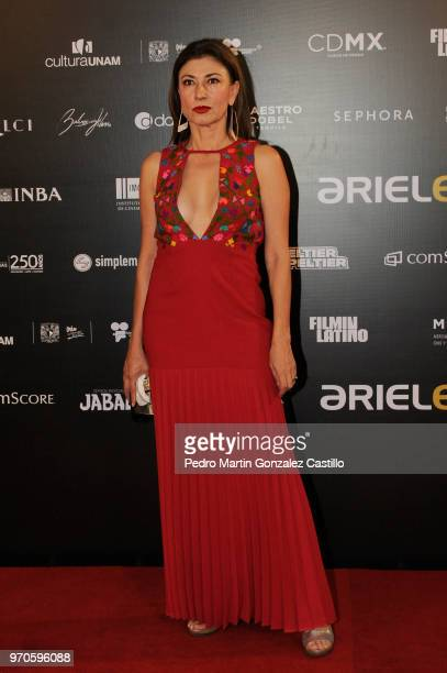 Mexican actress Mónica Huijara poses during the Red Carpet of 60th Ariel Awards at Palacio de Bellas Artes on June 5 2018 in Mexico City Mexico