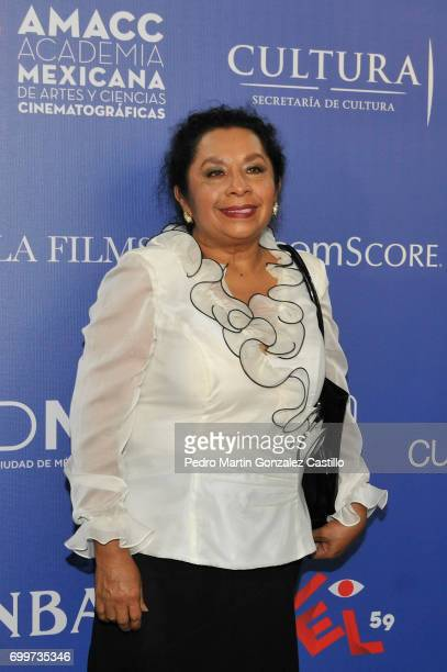 Mexican actress Norma Reyna poses during the 59th Ariel Awards Nominees Event at Fiesta Americana Hotel on June 21 2017 in Mexico City Mexico