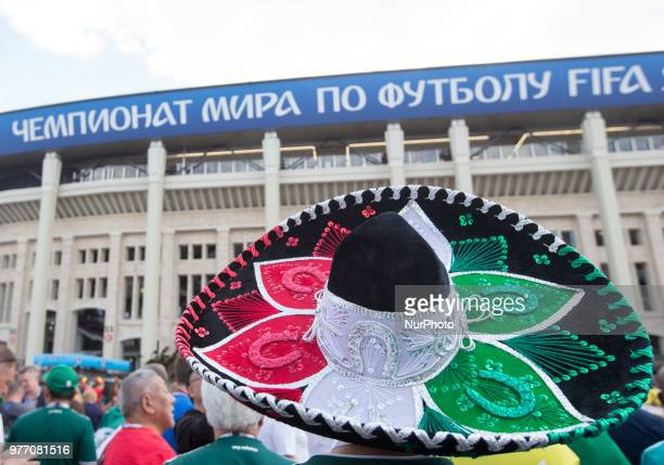 Mexican attends the Russia 2018 World Cup Group F football match between Germany and Mexico at the Luzhniki Stadium in Moscow on June 17 2018