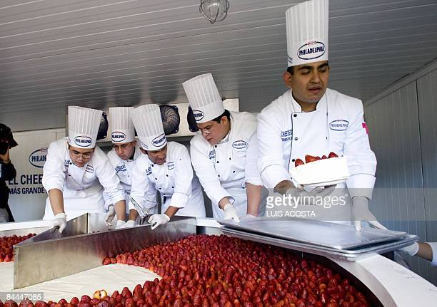 Mexican chefs cut the Guinness World Record biggest cheesecake in Mexico City on January 25 2009 The biggest cheesecake of the world with 25 meters...