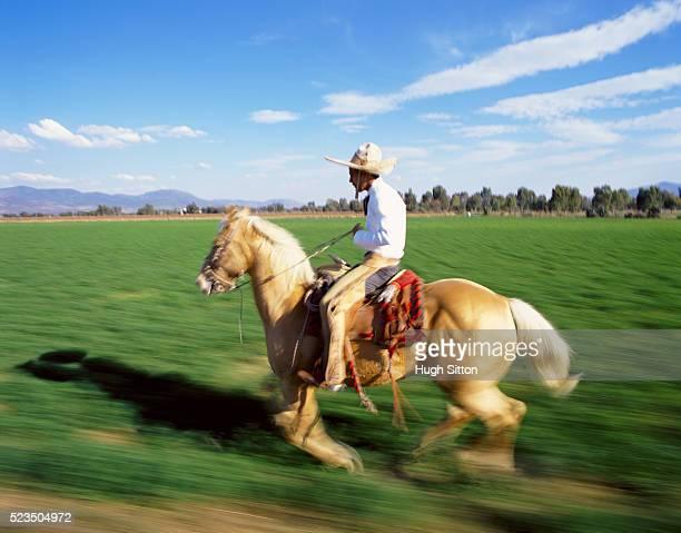 mexican cowboy riding a horse, mexico - hugh sitton stock pictures, royalty-free photos & images