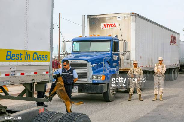 usa/mexico border - mexicali - immigrants crossing sign stock photos and pictures