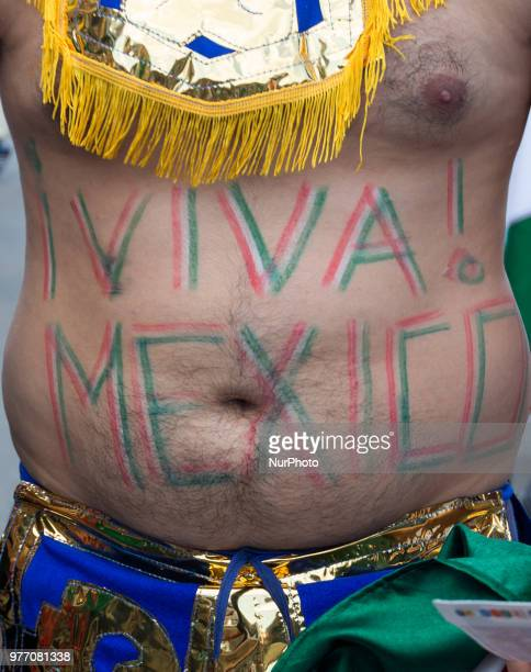 Mexican fan attends the Russia 2018 World Cup Group F football match between Germany and Mexico at the Luzhniki Stadium in Moscow on June 17 2018