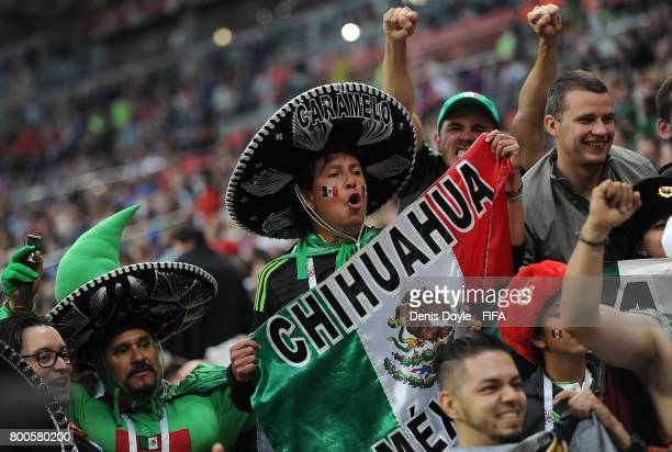 Mexican fans cheer their team during the Group A FIFA Confederation Cup match between Mexico and Russia at Kazan Arena on June 24 2017 in Kazan Russia