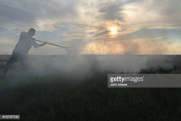 Mexican farm worker burns brush on a US farm on September 27 2016 Holtville California Thousands of Mexican seasonal workers legally cross the border...