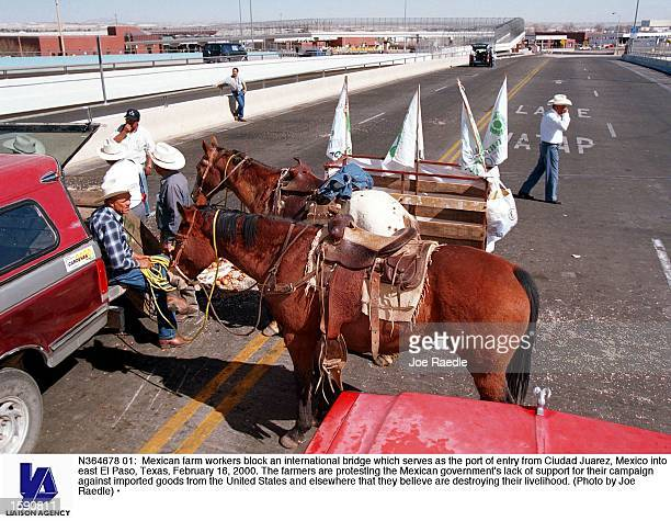 Mexican farm workers block an international bridge which serves as the port of entry from Ciudad Juarez Mexico into east El Paso Texas February 16...