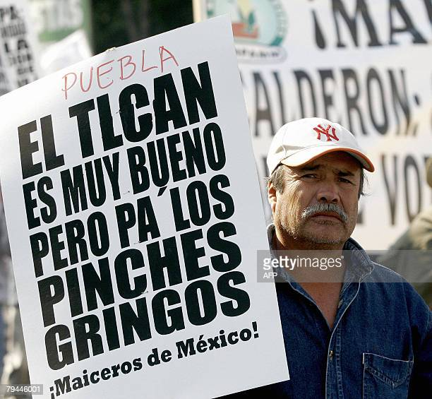 A Mexican farmer takes part 31 January 2008 in Mexico City in a march of hundreds of corn producers protesting against the NAFTA which liberates the...