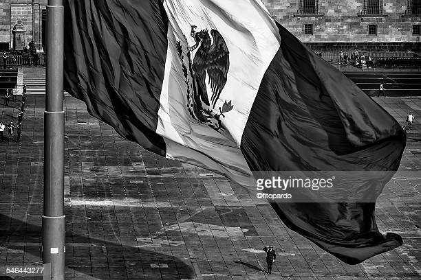 Mexican Flag Salute