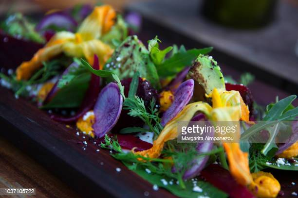 mexican gourmet salad with avocado and beetroot - yucatan peninsula stock pictures, royalty-free photos & images