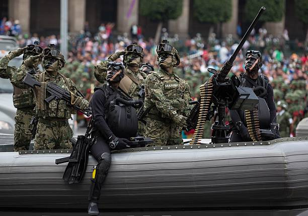 Image result for mexican independence day parade mexico city