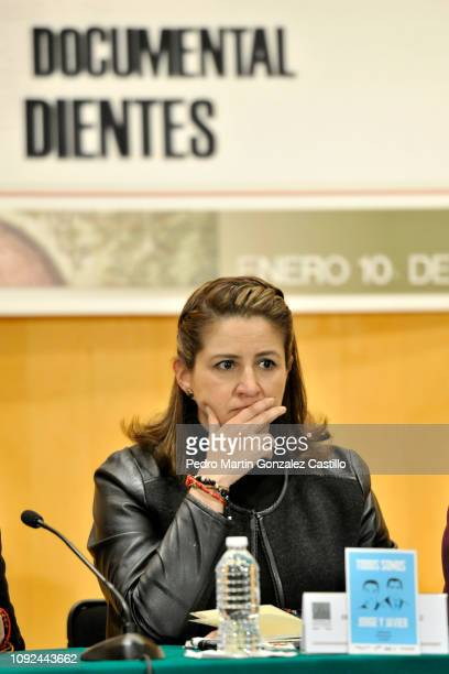 Mexican politician Martha Tagle Martínez attends the screening of the documentary 'Hasta los Dientes' or 'Armed to the Teeth' at Camara de Diputados...